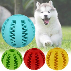 Dog Toy Interactive