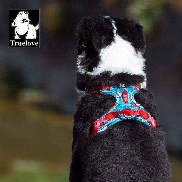 Dog Harness Camouflage Reflective Nylon