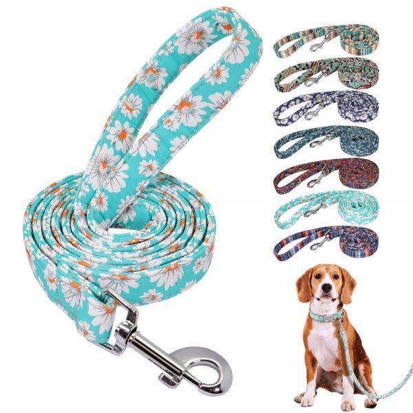 Print Small Dog Leash Nylon