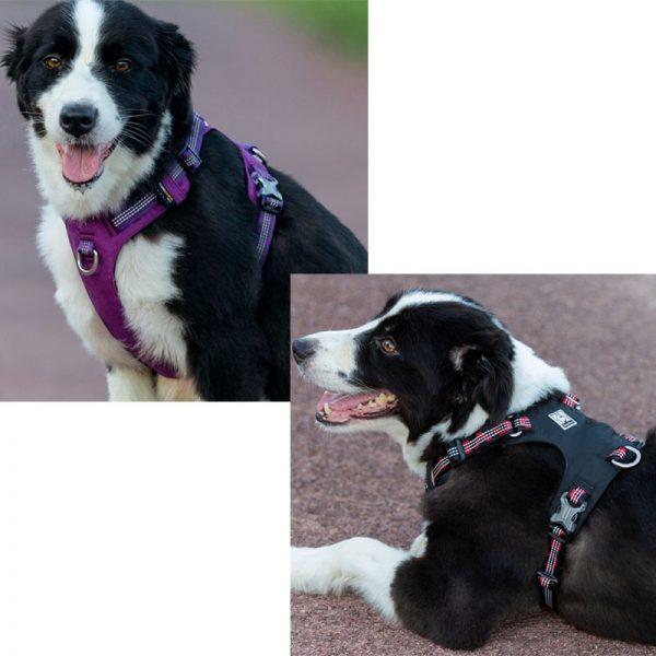 Waterproof Dog Harness Pet Harness