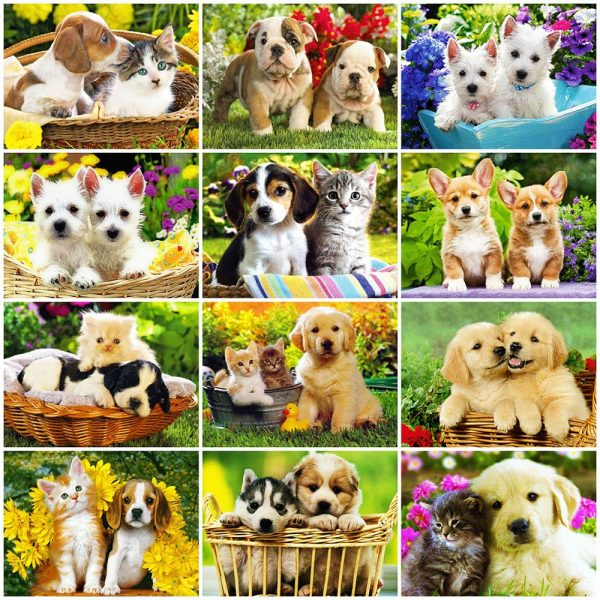Dog Art Fur Natural Landscape